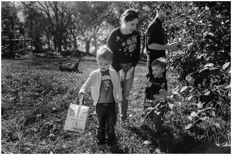 Apple orchard family photos in Madison wi